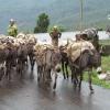 Ethiopia 2012_30